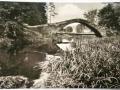 svedsky-most-dobra-voda-2
