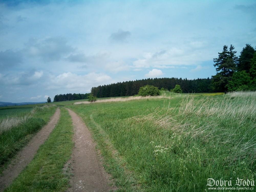 cesta k vojenskemu bunkru